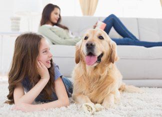 best vacuum for allergies and pet hair